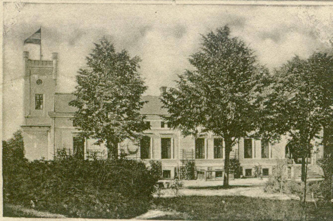 Kocury-pałac-1